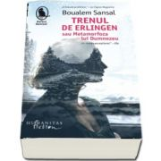 Trenul de Erlingen - Traducere si note de Madalina Ghiu