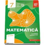 Matematica. Algebra, geometrie. Caiet de lucru. Clasa a VII-a. Initiere. Partea a II-a - Colectia mate 2000+