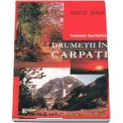 Drumetii in Carpati - Trasee turistice