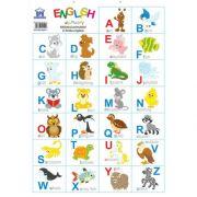 Plansa. Alfabetul animalelor in limba engleza
