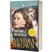 Fantomele trecutului, Sandra Brown, Litera