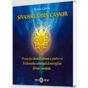Sivaismul din Casmir. Proiectia identificatoare a yantra-ei Tridentului arhetipal al energiilor divine esentiale