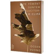 Pe Pamant suntem stralucitori o clipa, Ocean Vuong, Storia Books