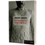Fenomene naturale, Fortier Vincent, VREMEA