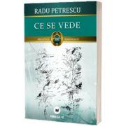 Ce se vede, Radu Petrescu, PARALELA 45