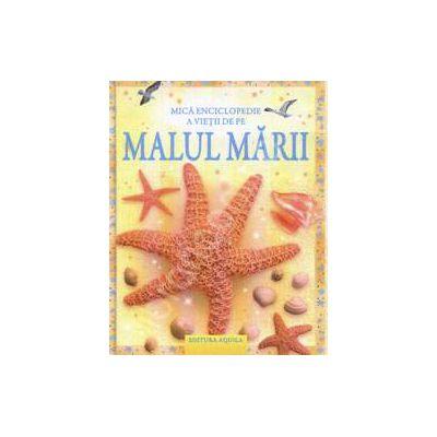 Mica enciclopedie a vietii de pe MALUL MARII