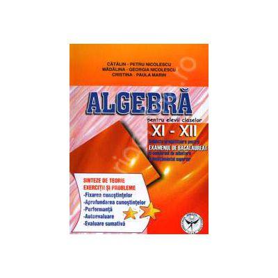 Algebra pentru elevii claselor XI-XII. Subiecte pregatitoare pentru examenul de bacalaureat