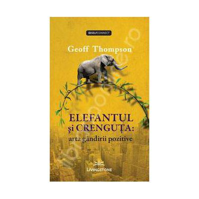 Elefantul si crenguta: arta gandirii pozitive