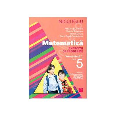 Matematica. Exercitii si probleme, clasa a V-a, Semestrul 1