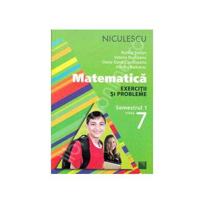 Matematica. Exercitii si probleme, clasa a VII-a - Semestrul 1