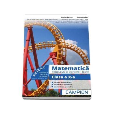 Marius Burtea - Culegere de matematica, clasa a X-a. Probleme si exercitii, teste - Profilul tehnic. Semestrul II